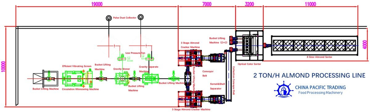 Factory Plant Drawing of Almond Processing Line