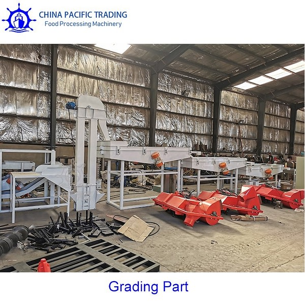 Pictures of Pine Nuts Grading Machine