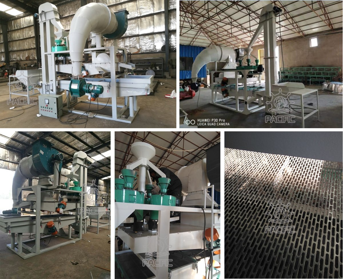 Pictures of Pine Nuts Shelling Machine